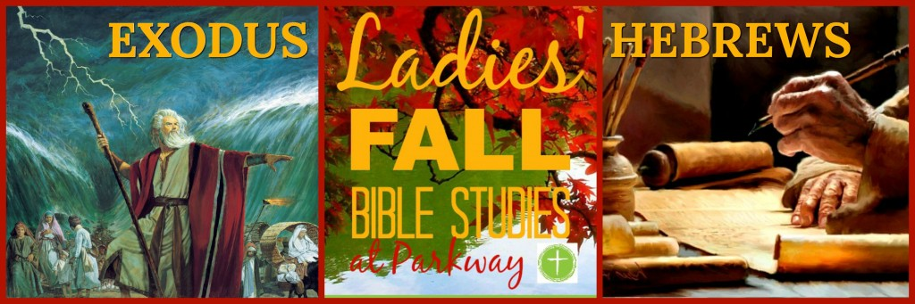 FALL 2017 BIBLE STS